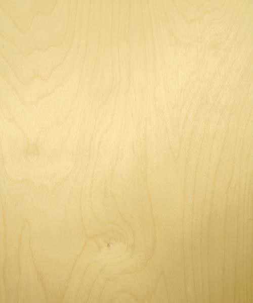 White Birch Veneer