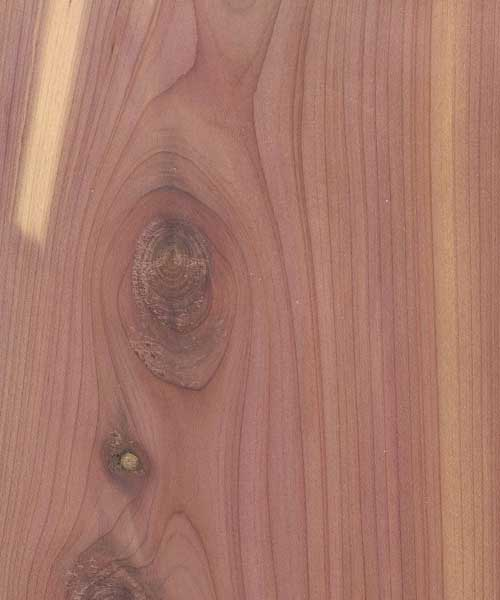 Aromatic Cedar Plywood