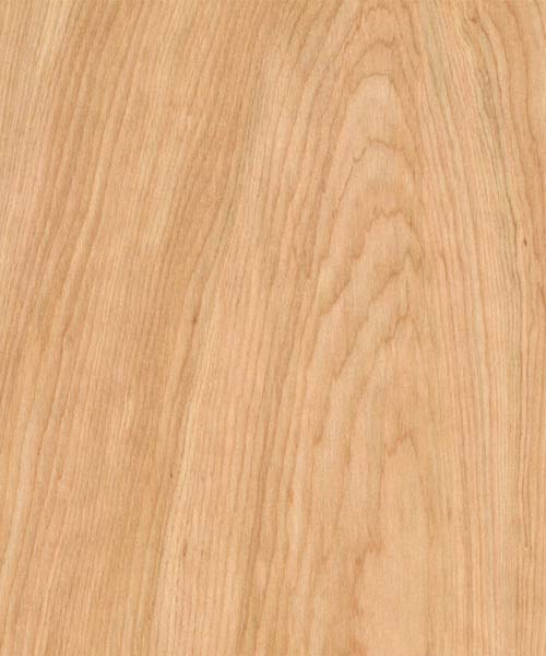 Shop Hardwood Plywood