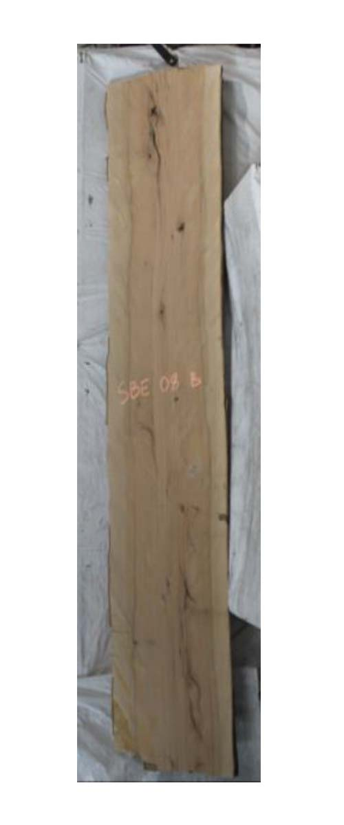 Backside Beech Live Edge Slab Sbe-08