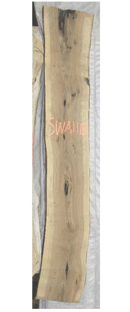 Backside White Ash Locust Live Edge Wood Slab Swa-11